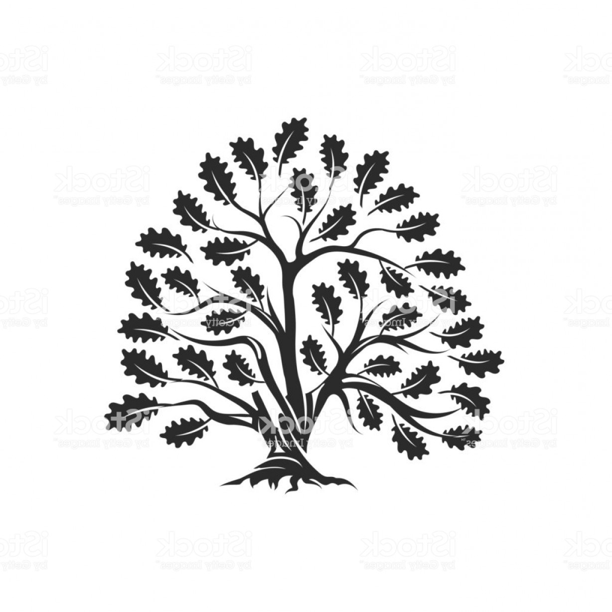 Red Oak Tree Vector: Huge And Sacred Oak Tree Silhouette Icon Badge Isolated On White Background Gm