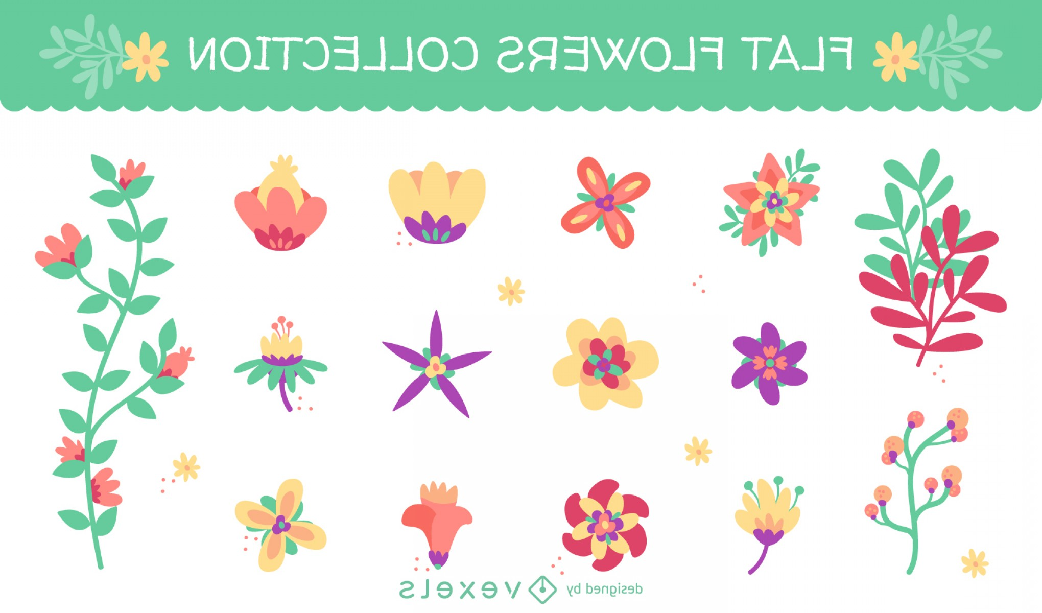 Open Source Vector Graphic Flower: Huge Set With Flat Flower Illustrations