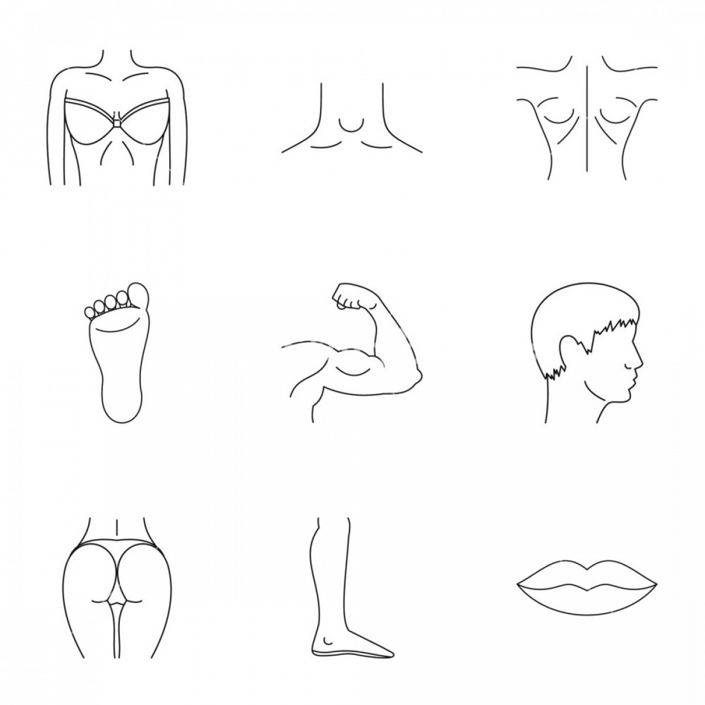 Human Body Outline Vector: Human Body Icons Set Outline Illustration Of Human Body Vector Icons For Web Rlaiqrpqjhuyocey