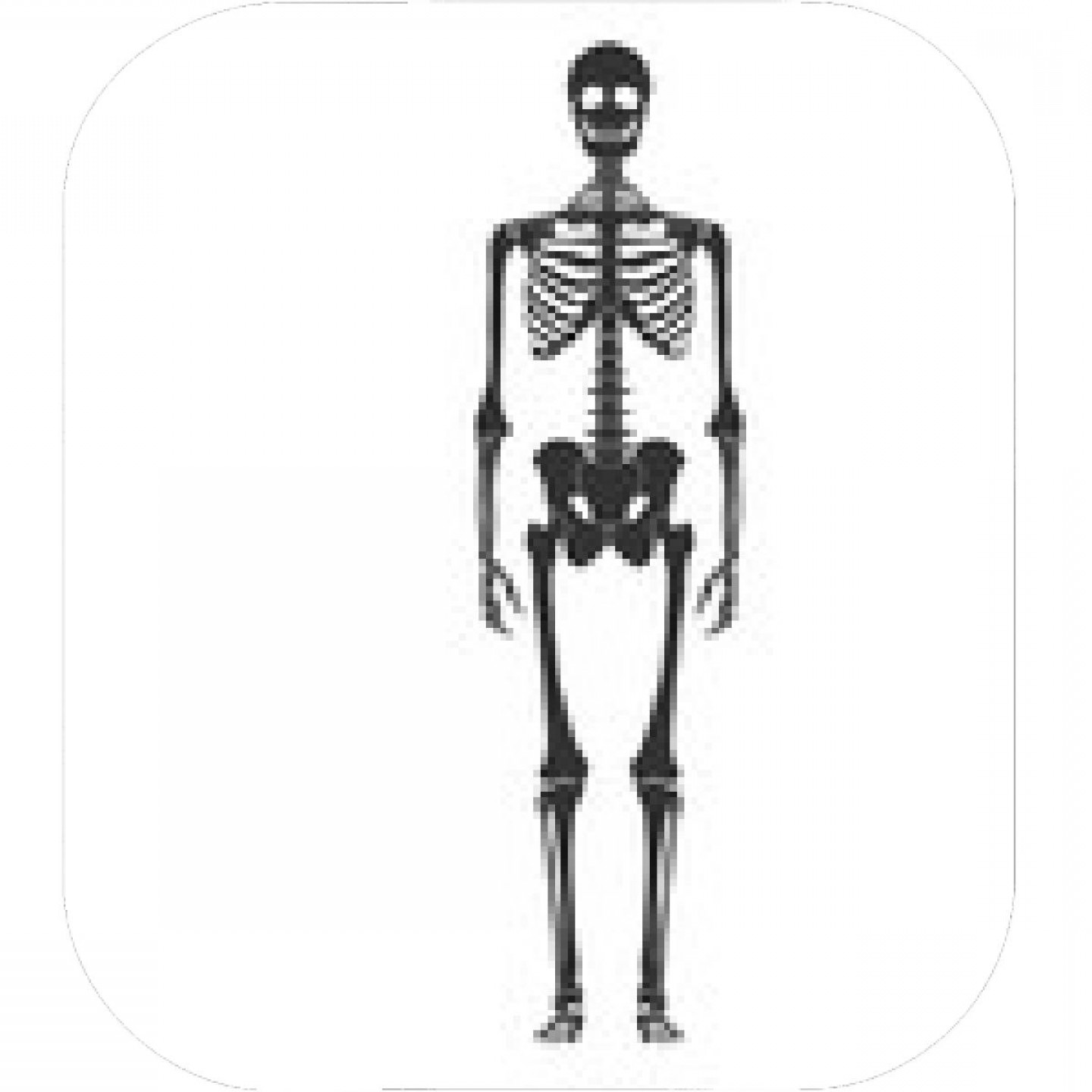 Vector Skeleton Circle Dancing: Human Skeleton Posing Vector Illustration Halloween Party Design Template