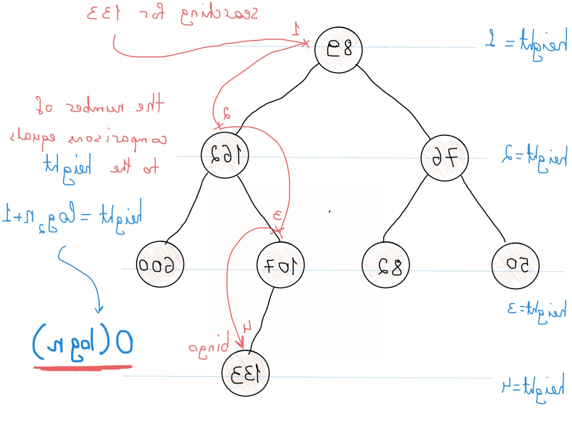 Vector Data Structure Complexity: I Dont Understand Graph Theory Ca