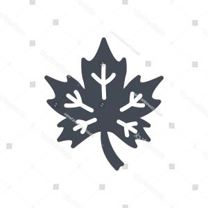 Maple Leaf Silhouette Vector: Icon Vector Solid Glyph Maple Leaf