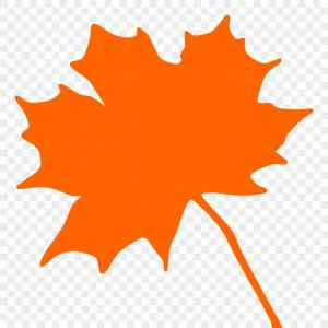 Canadian Leaf Vector: Iixwmaple Leaf Svg Vector File Vector Clip Art