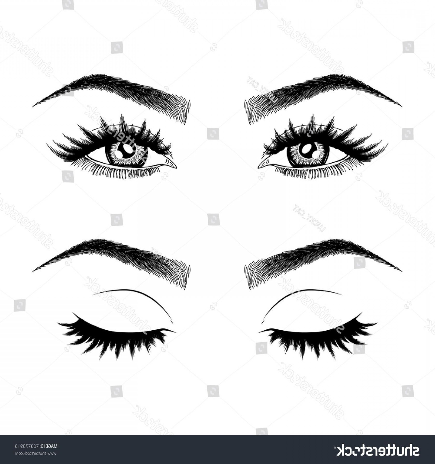 Top Eye Lashes Vector: Illustration Womans Eyes Eyelashes Eyebrows Makeup Stock Vector