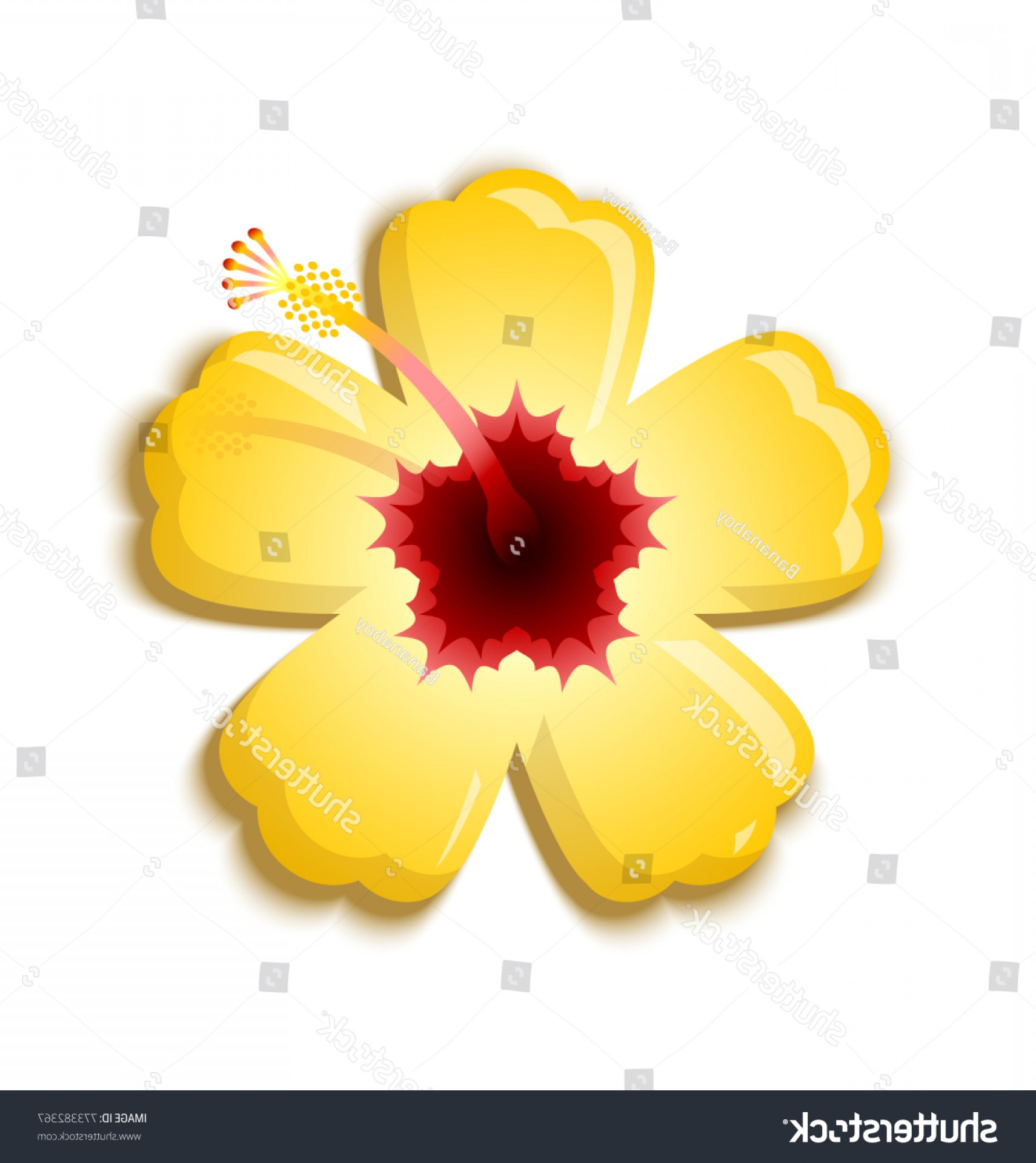 Hawaii State Flower Vector Art: Illustration Yellow Hibiscus That National Flower
