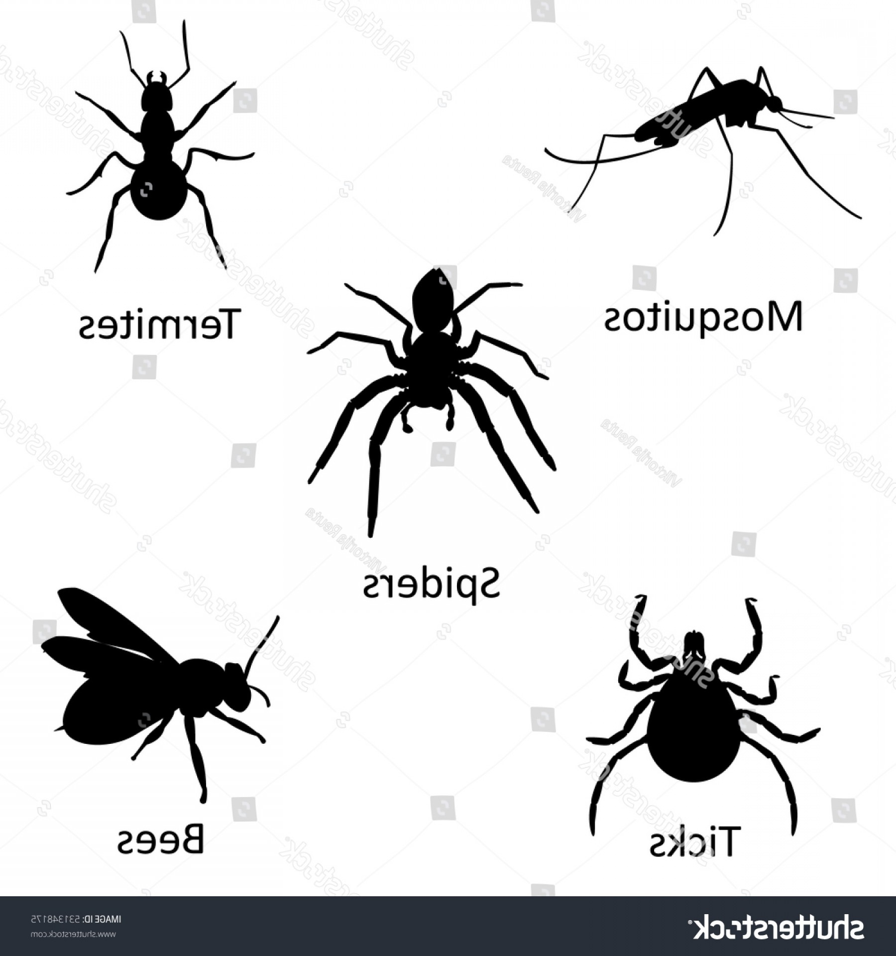 Termites With Wings Vector: Insect Black Silhouette Icon Set Collection
