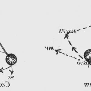 Angular Momentum Vectors Drawing: An Analysis Of Velocity And Mass In The Linear Momentum