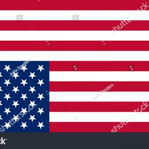 Thin Red Line Distressed Flag Vector: American Flag With Thin Blue Line Grunge Aged Vector