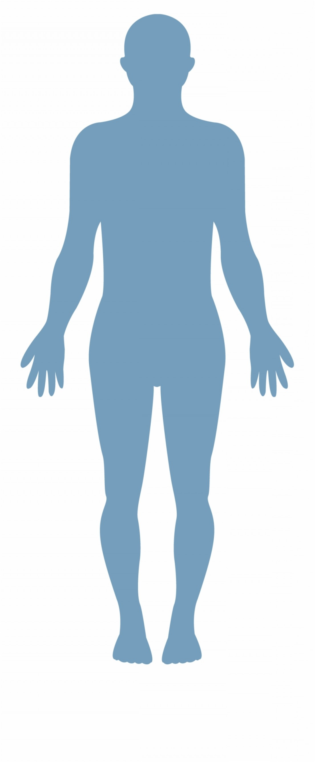 Human Body Outline Vector: Iohoxmmhuman Body Vector Transparent Healthy Body Png