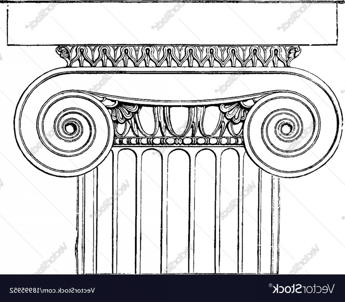AT-AT Vector: Ionic Capital The Temple Of Minerva Polias At Vector