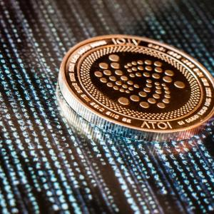 Vector 3 Million Spotlight Twin: Iota Almost All Tokens From Million Hack Have Been Found