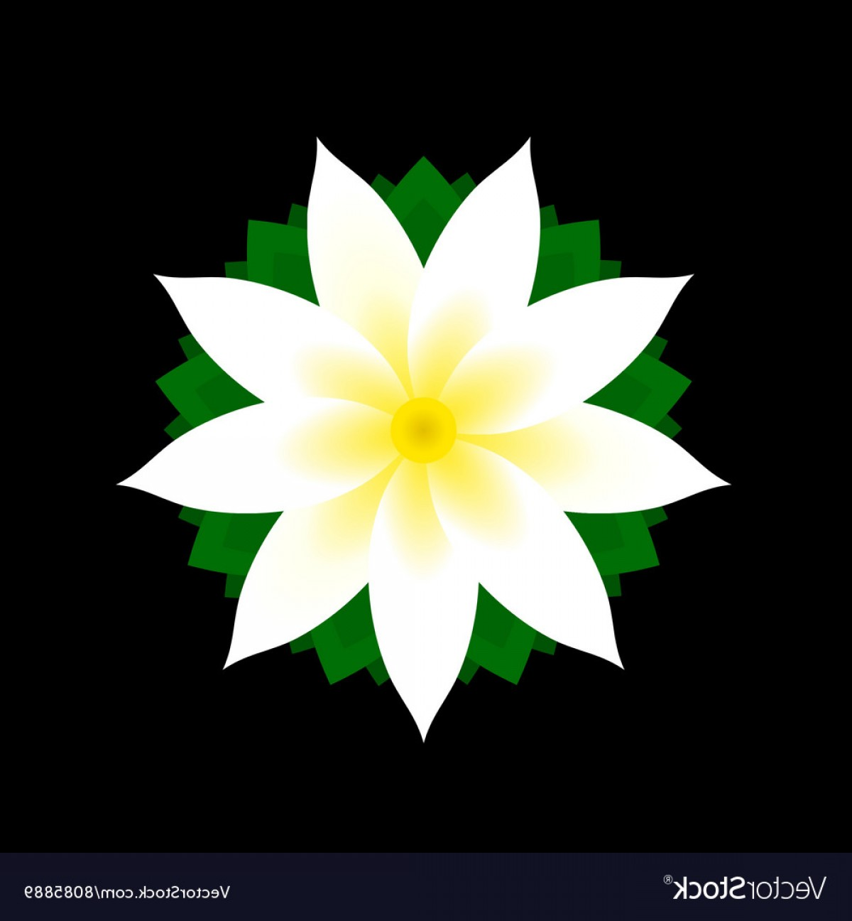 Icon Of Flower Vectors: Jasmine Flower Icon On Black Background Vector