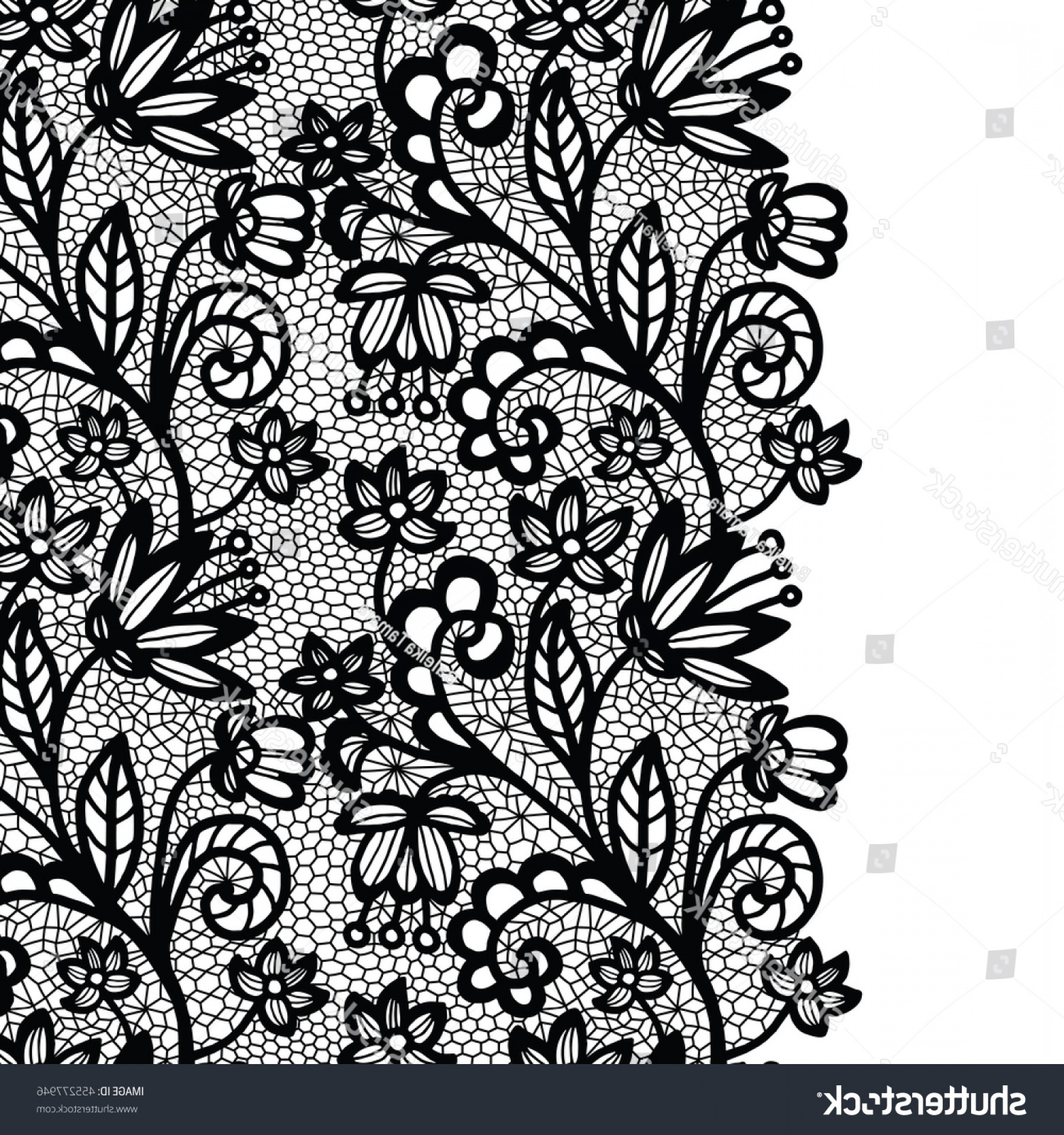 Floral Lace Trim Vector: Lace Border Vector Illustration Black Lacy