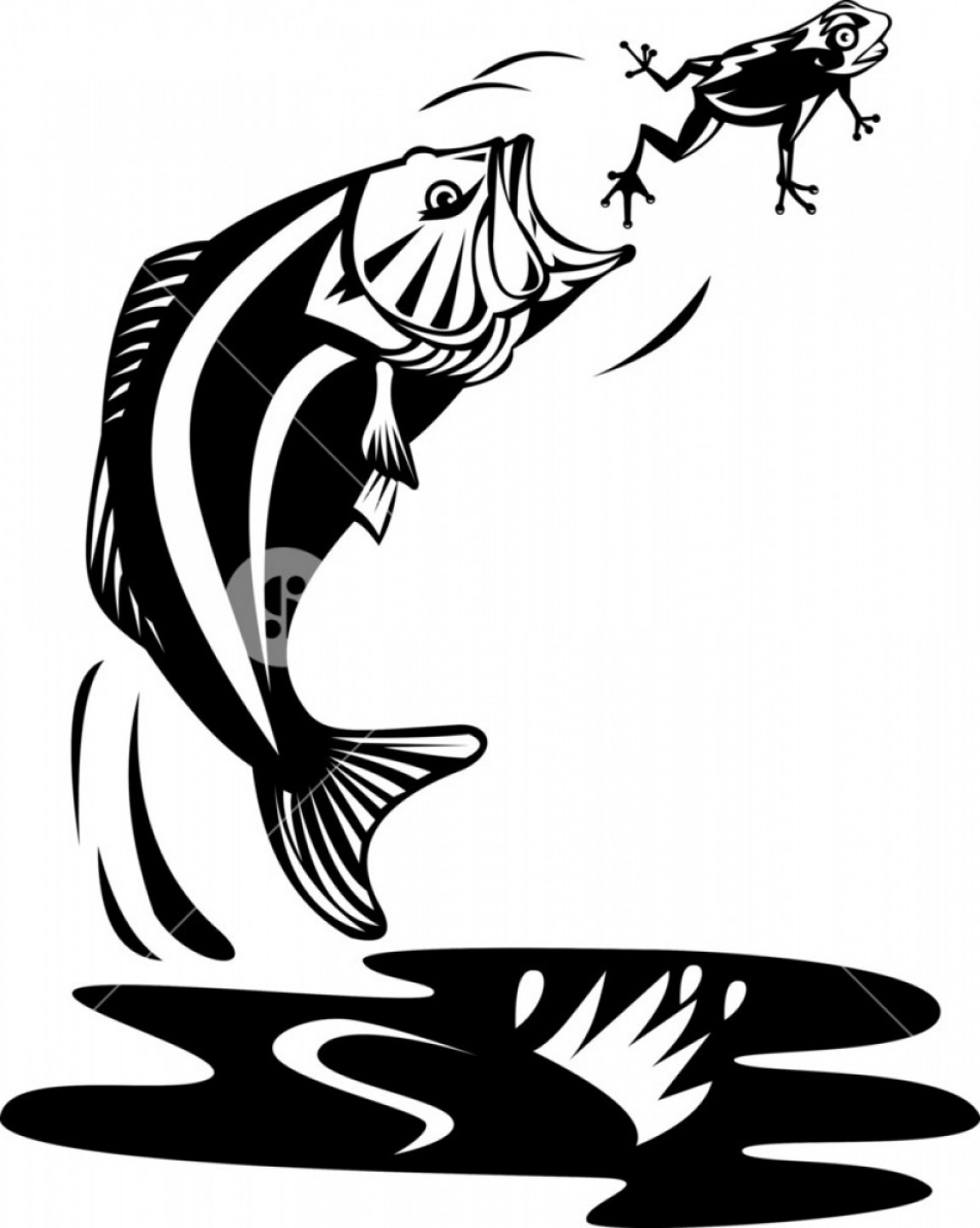 Largemouth Bass Silhouette Vector: Largemouth Bass Jumping Catching Frog Rwkrioquwjgmhnk