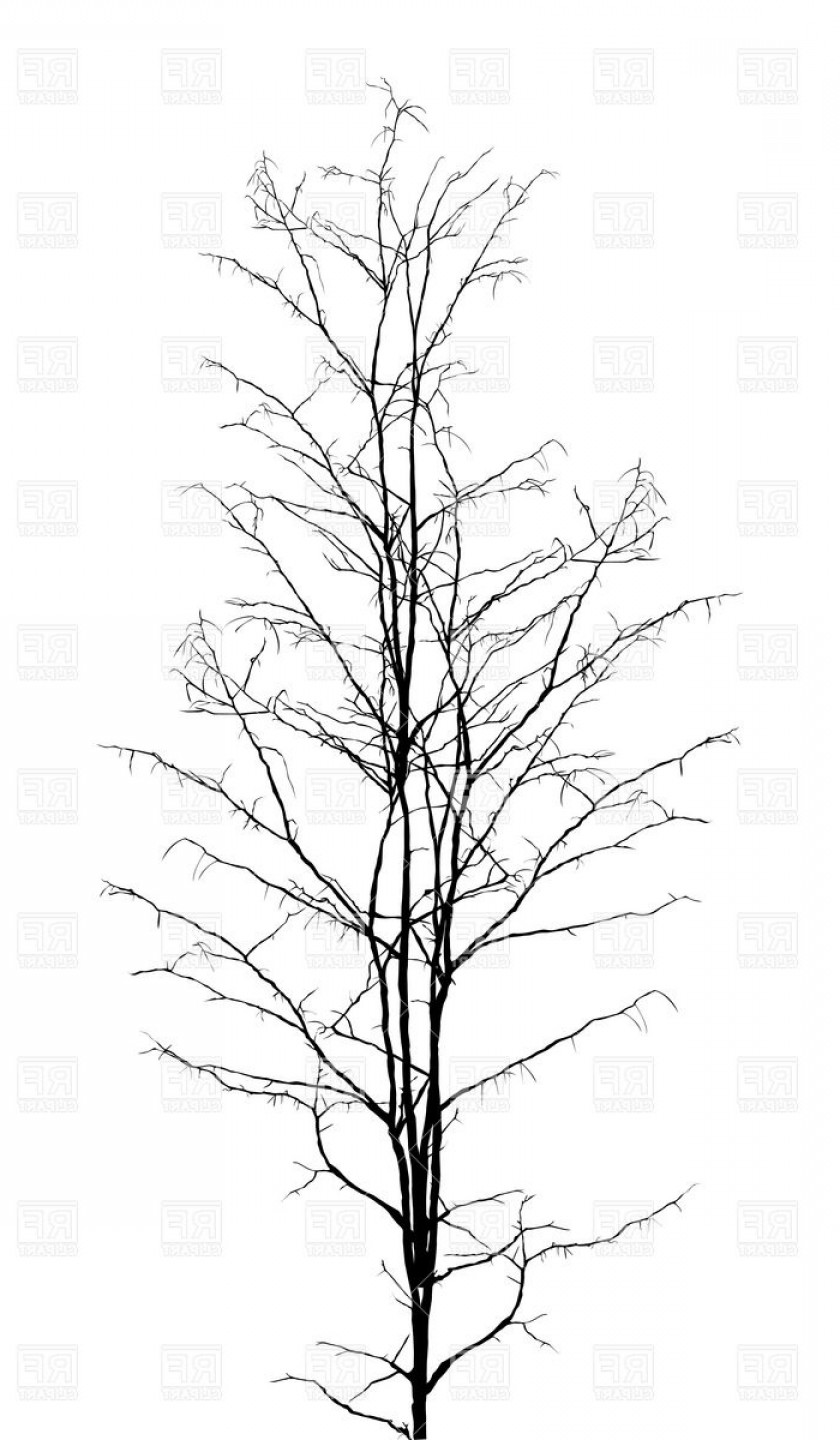 Tree Silhouette Vector Clip Art: Leafless Dry Tree Silhouette Vector Clipart