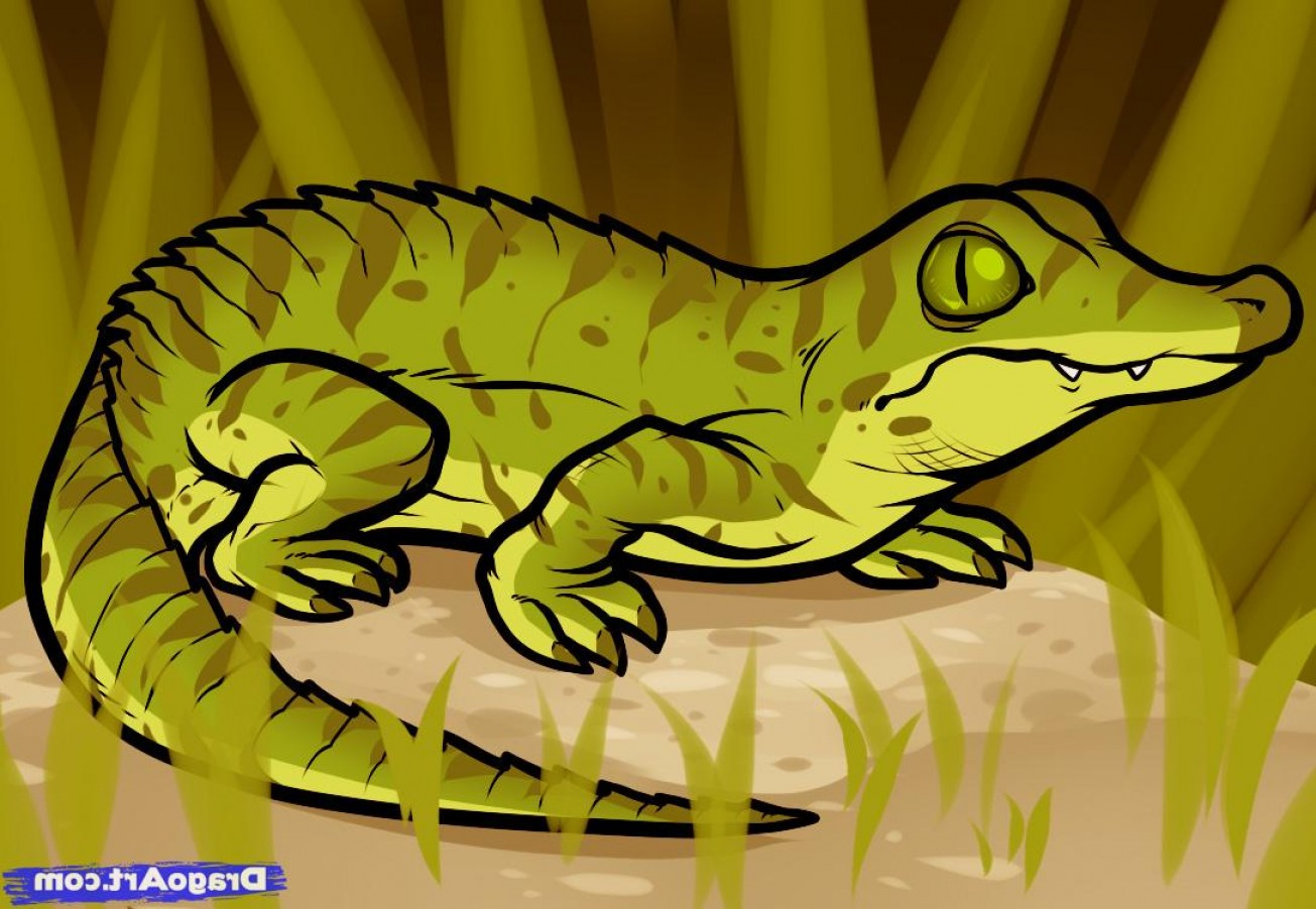 Chibi Vector The Crocodile: Learn How To Draw A Baby Crocodile Baby Crocodile