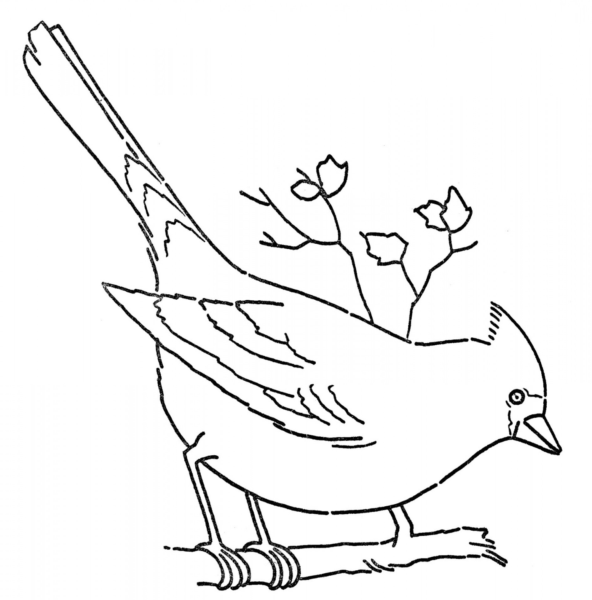 2013 St. Louis Cardinals Logo Vector: Line Art Coloring Page Cardinal On Branch