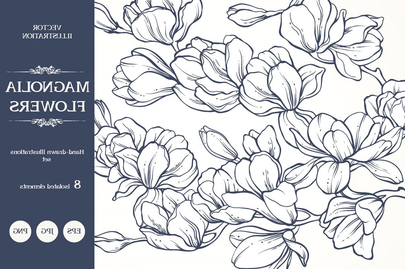 Open Source Vector Graphic Flower: Linear Vector Magnolia Flowers Set