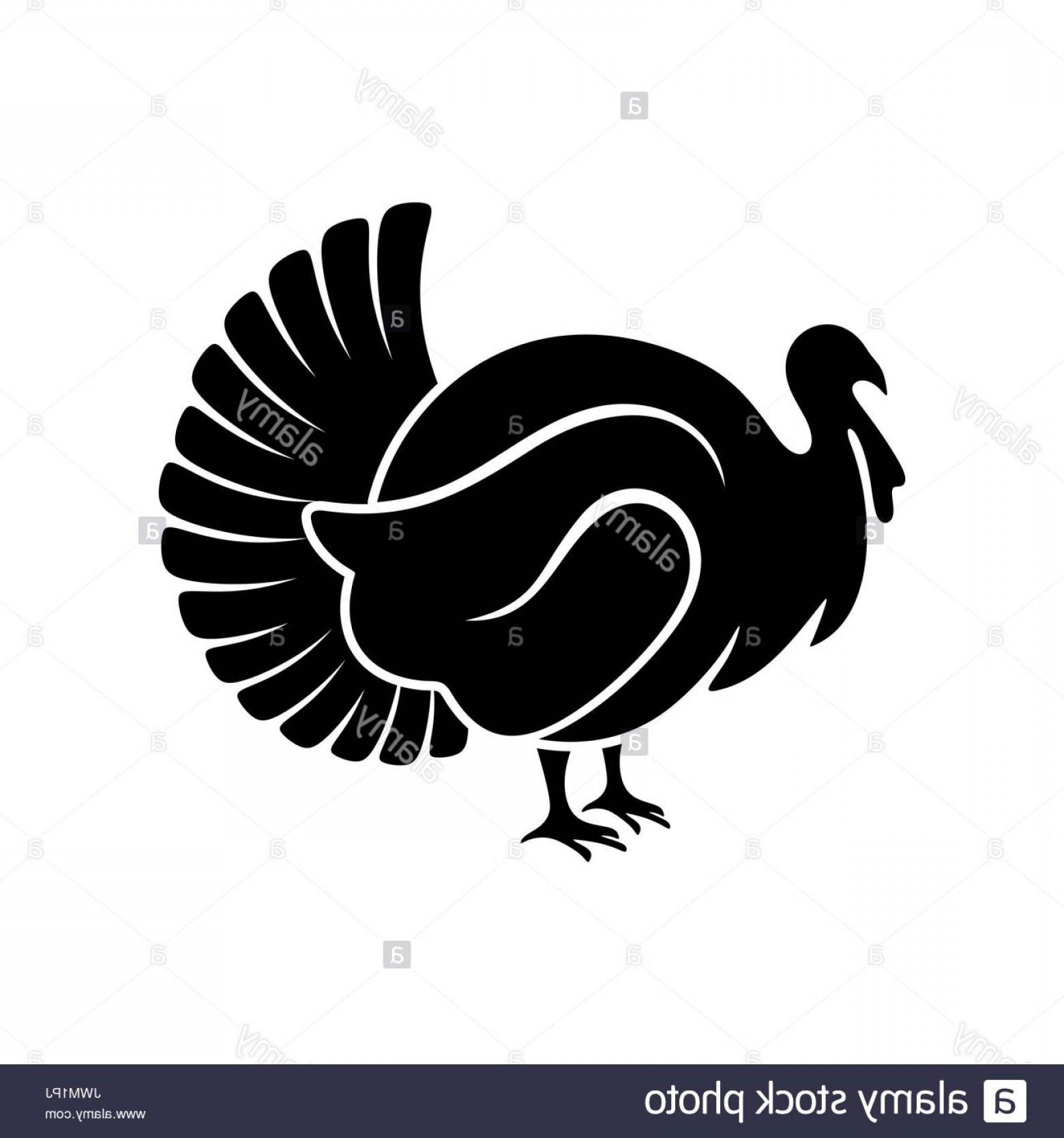 Turkey Logo Vector Art: Logo And Symbol Of A Turkey For Thanksgiving Image