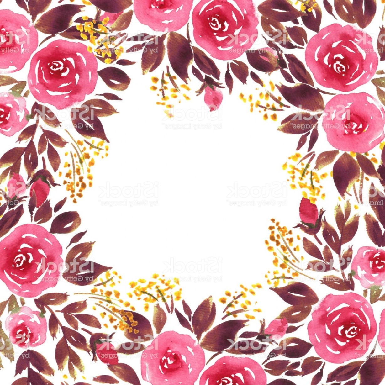 Loose Diamond Border Vector: Loose Watercolor Roses Frame Composition Of Hand Painted Flowers In Pink And Purple Gm