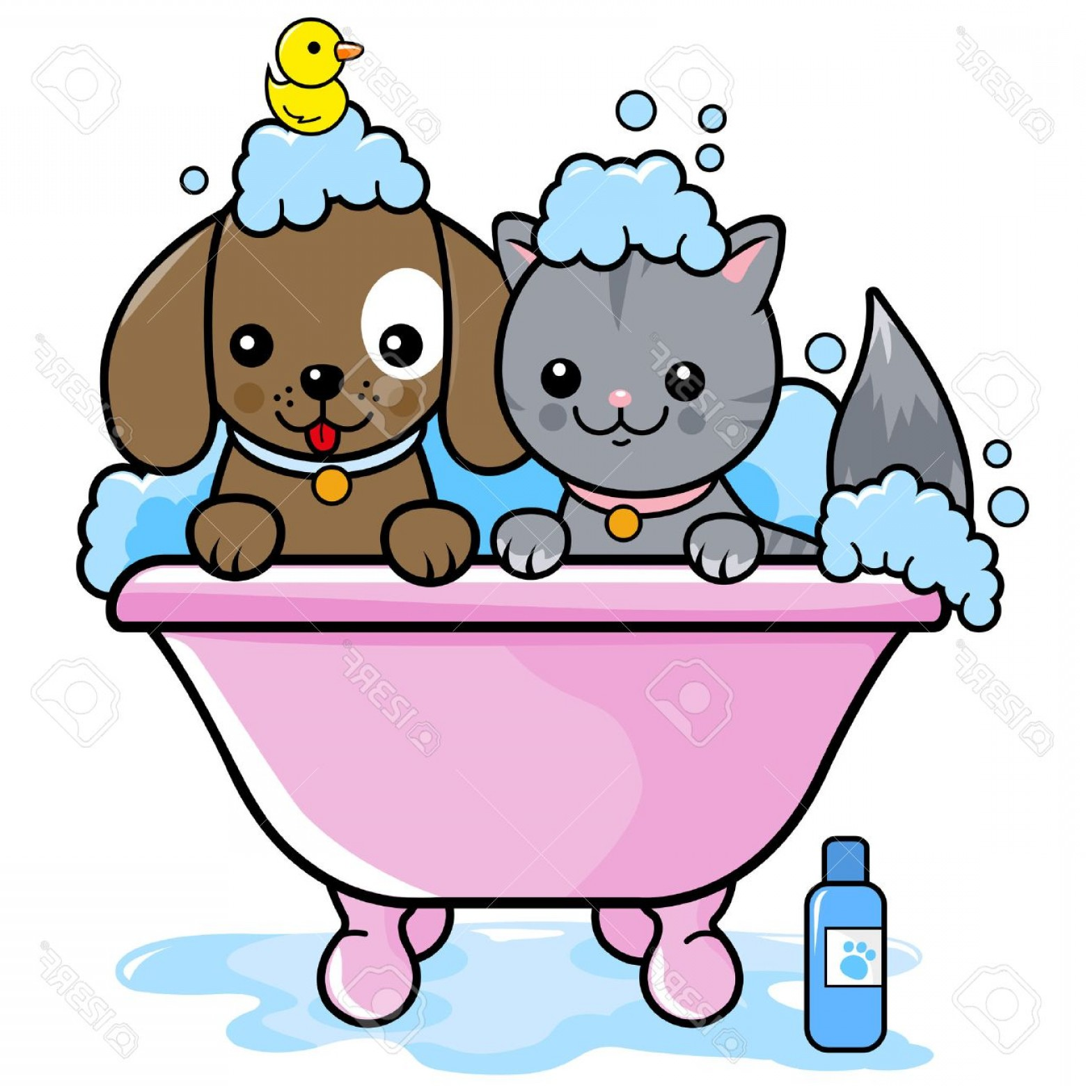 Dog Bubble Bath Vector: Lovely Photostock Vector Dog And A Cat In A Tub Taking A Bubble Bath