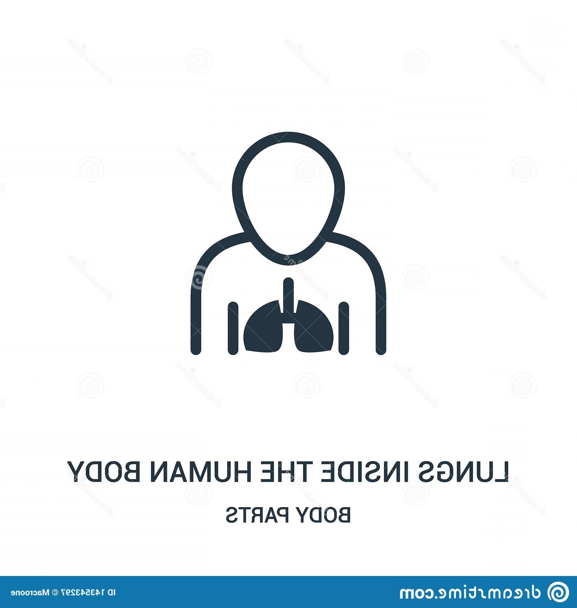 Human Body Outline Vector: Lungs Inside Human Body Icon Vector Body Parts Collection Thin Line Lungs Inside Human Body Outline Icon Vector Image