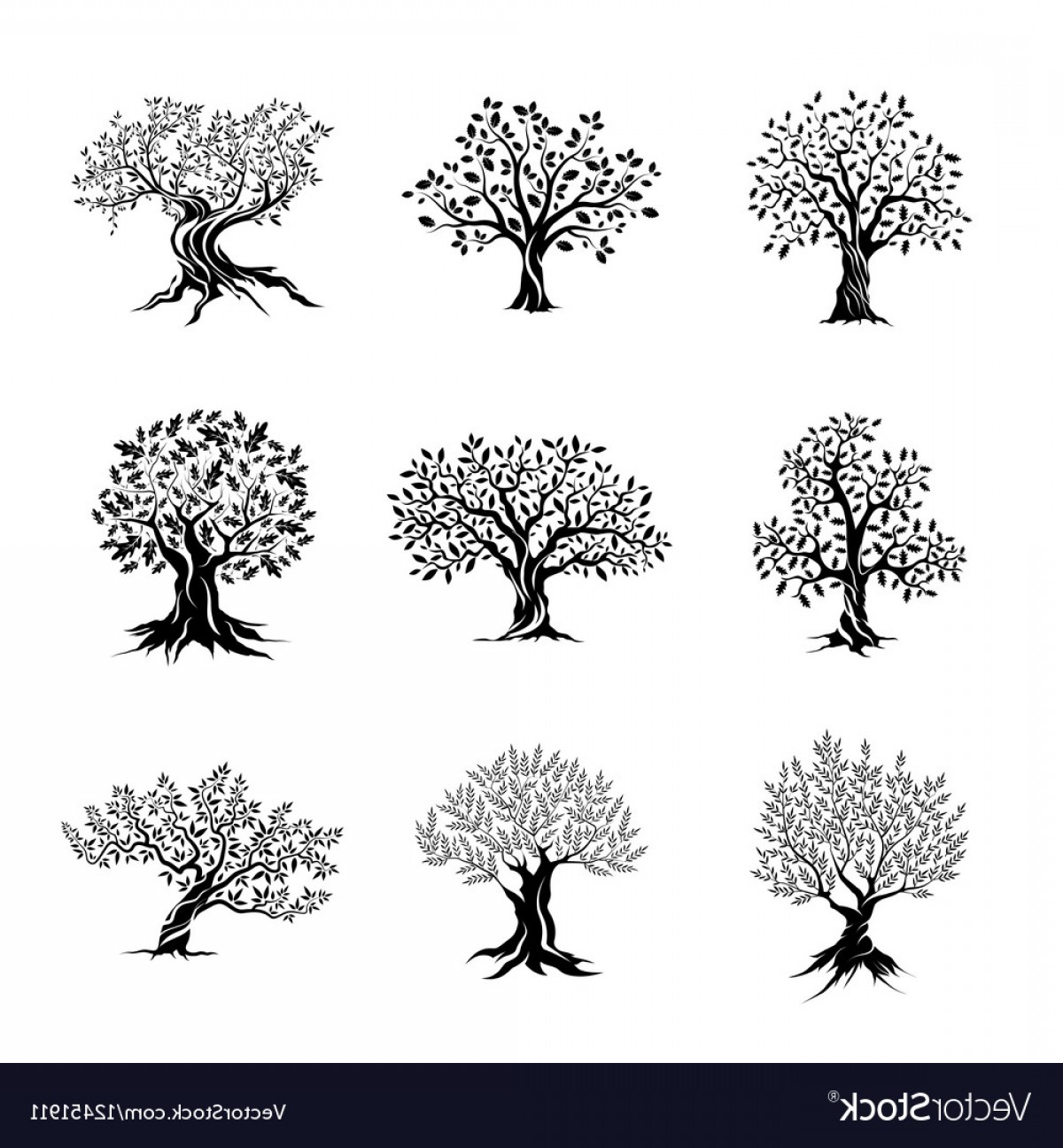 Oak Tree Silhouette Vector Graphics: Magnificent Olive And Oak Trees Silhouette Vector
