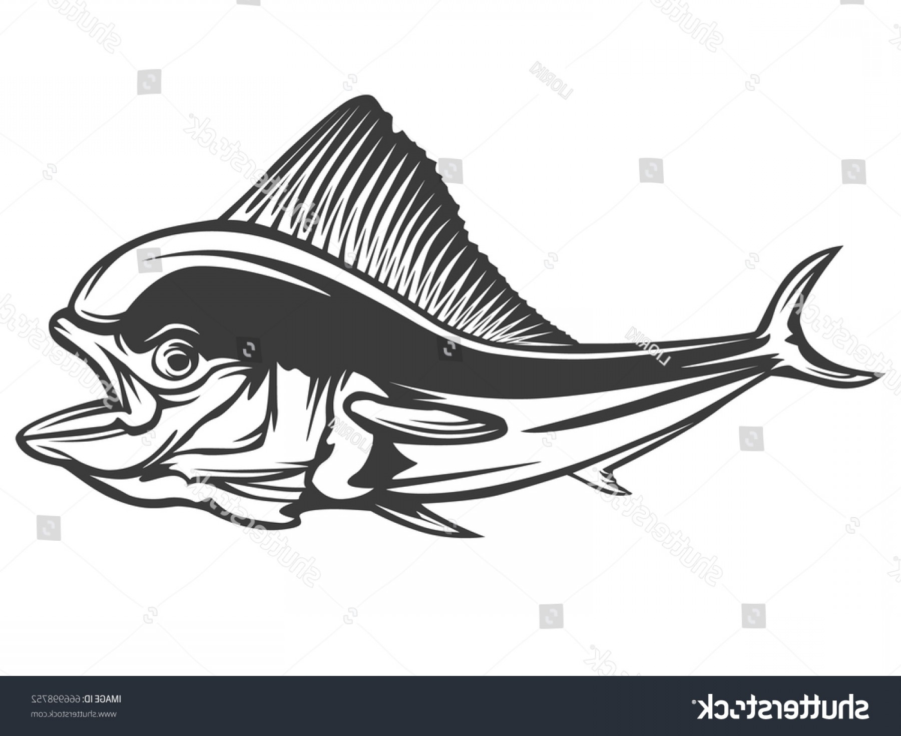 Mahi Mahi Outline Vector Images: Mahi Fishing On White Logo Illustration