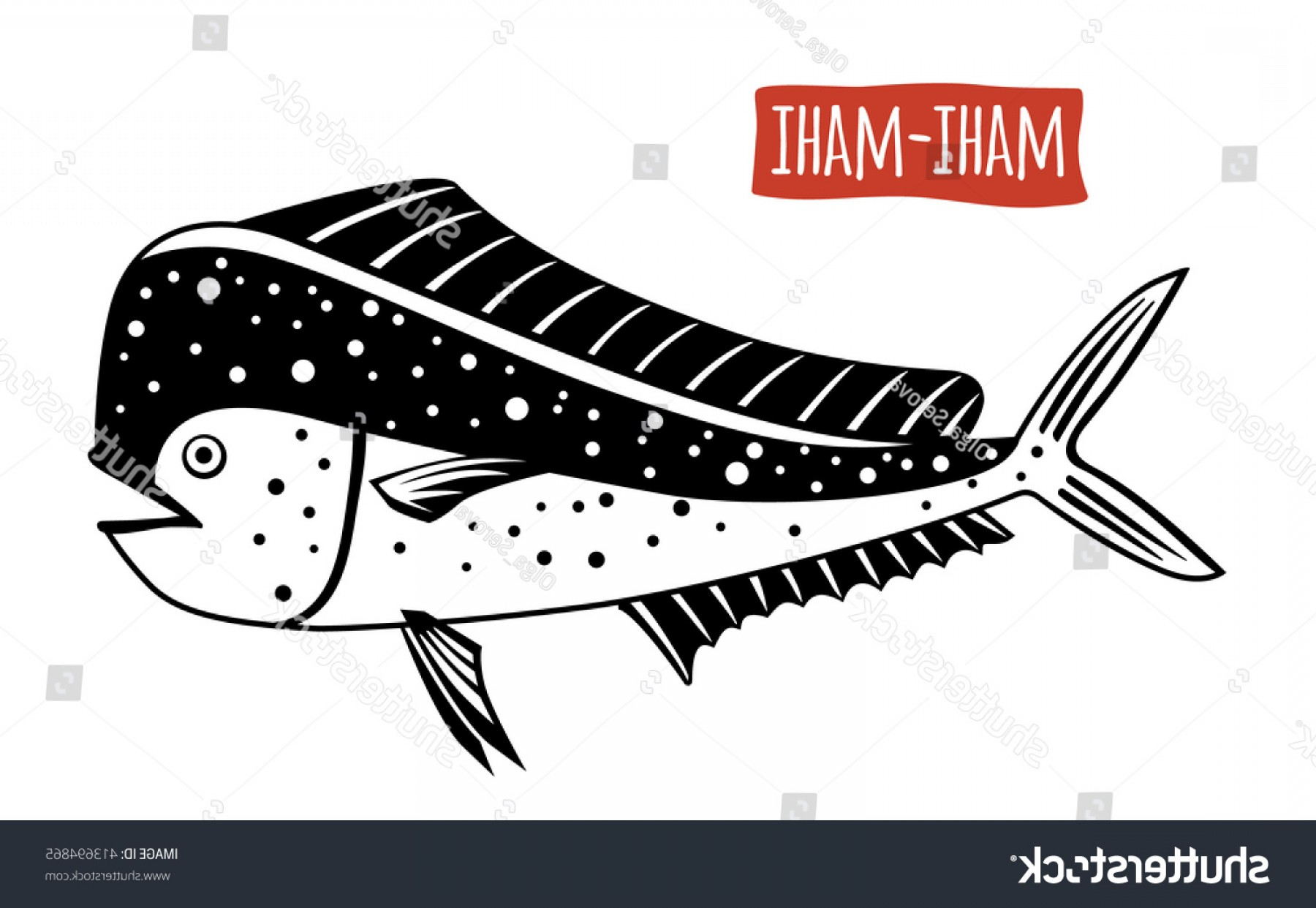 Mahi Mahi Outline Vector Images: Mahimahi Vector Illustration Cartoon Style
