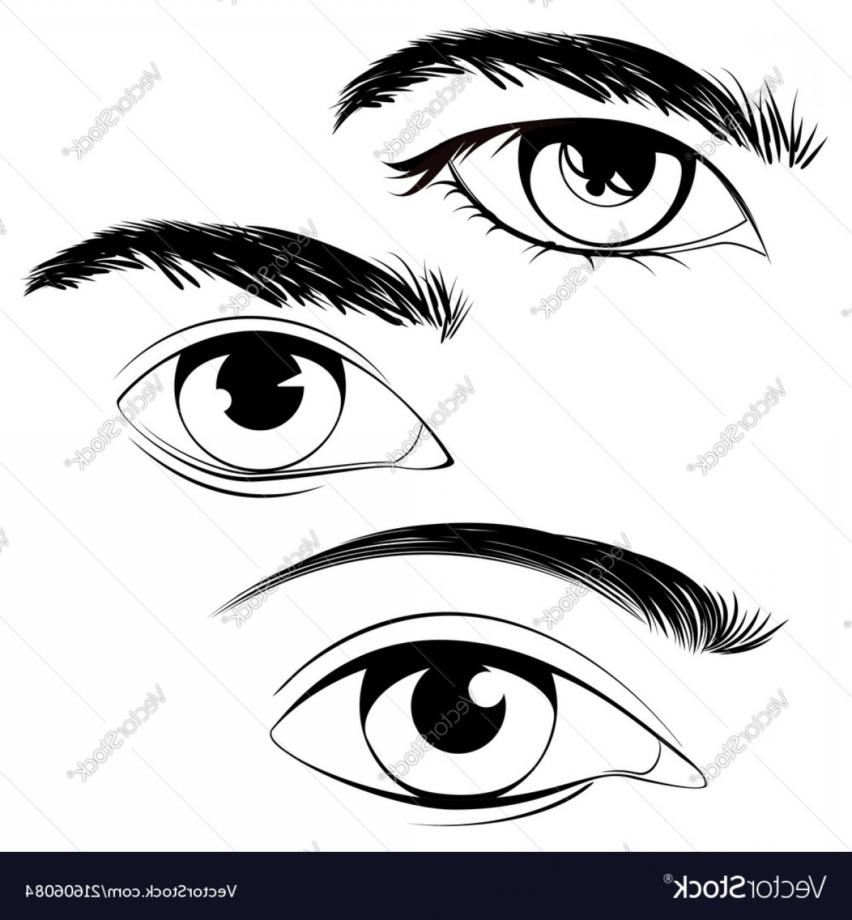 Male Eyes Vector Graphic: Male Eyes With Eyebrows Vector