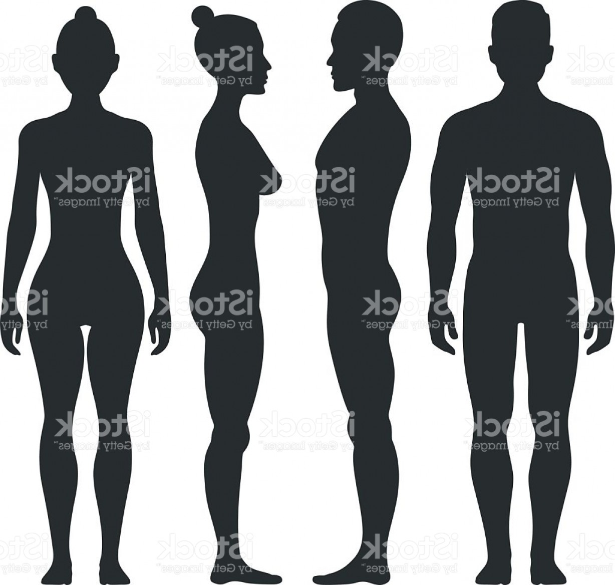 Male Silhouette Vector Art: Man And Woman Vector Silhouettes In Front Side View Gm