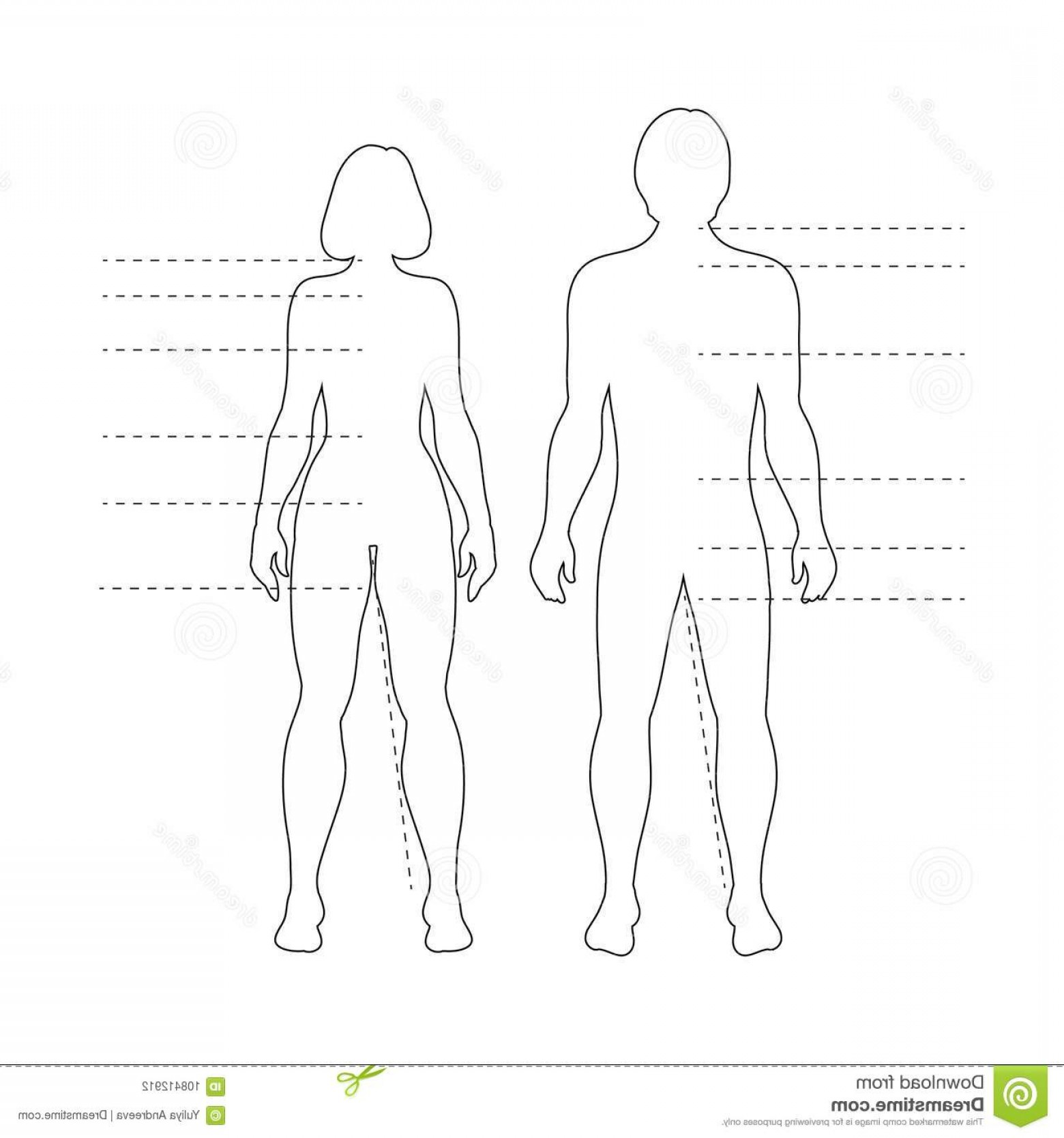 Human Body Outline Vector: Man Woman Human Body Silhouettes Pointers Vector Isolated Outline Infographic Figures Image