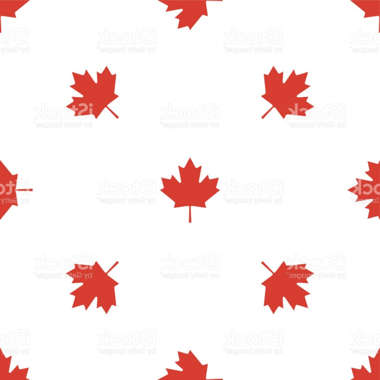 Geographic Leaf Vector: Maple Leaf Seamless Pattern Vector Gm