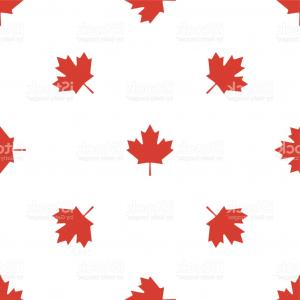 Geographic Leaf Vector: Canadian Maple Leaf With City Name Ottawa Icon Seamless Pattern On White Background Gm