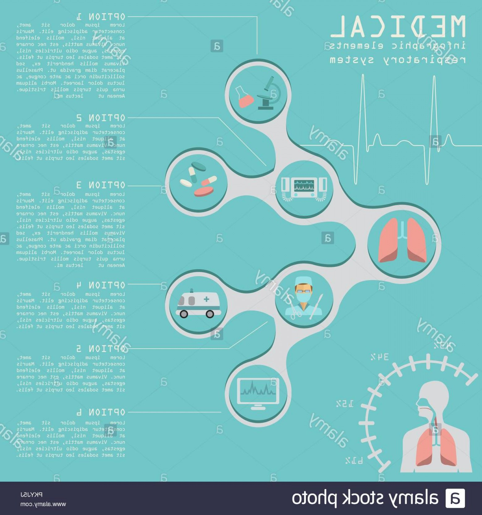 Vector System Infographic: Medical And Healthcare Infographic Respiratory System Infographics Vector Illustration Image