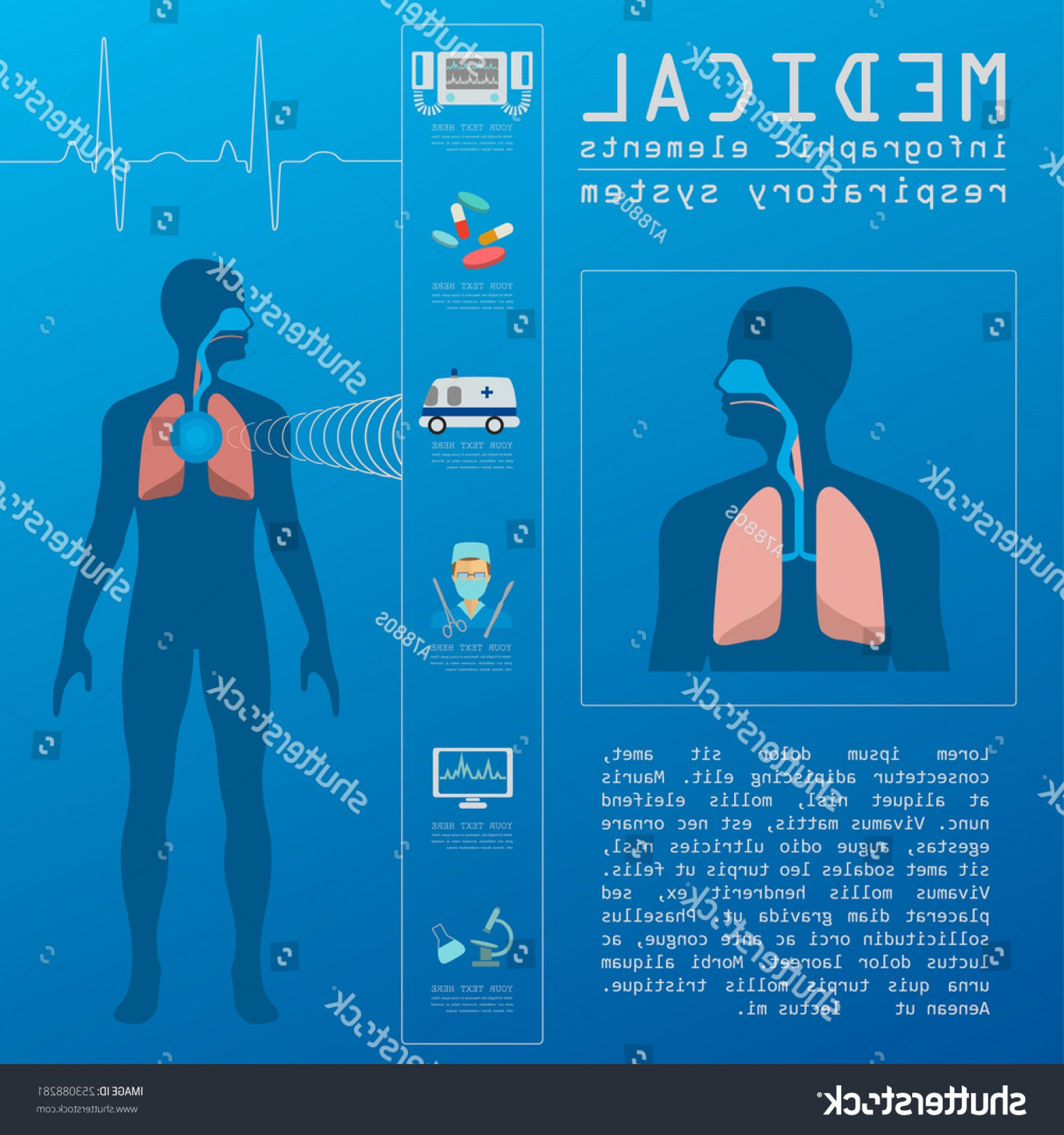 Vector System Infographic: Medical Healthcare Infographic Respiratory System Infographics