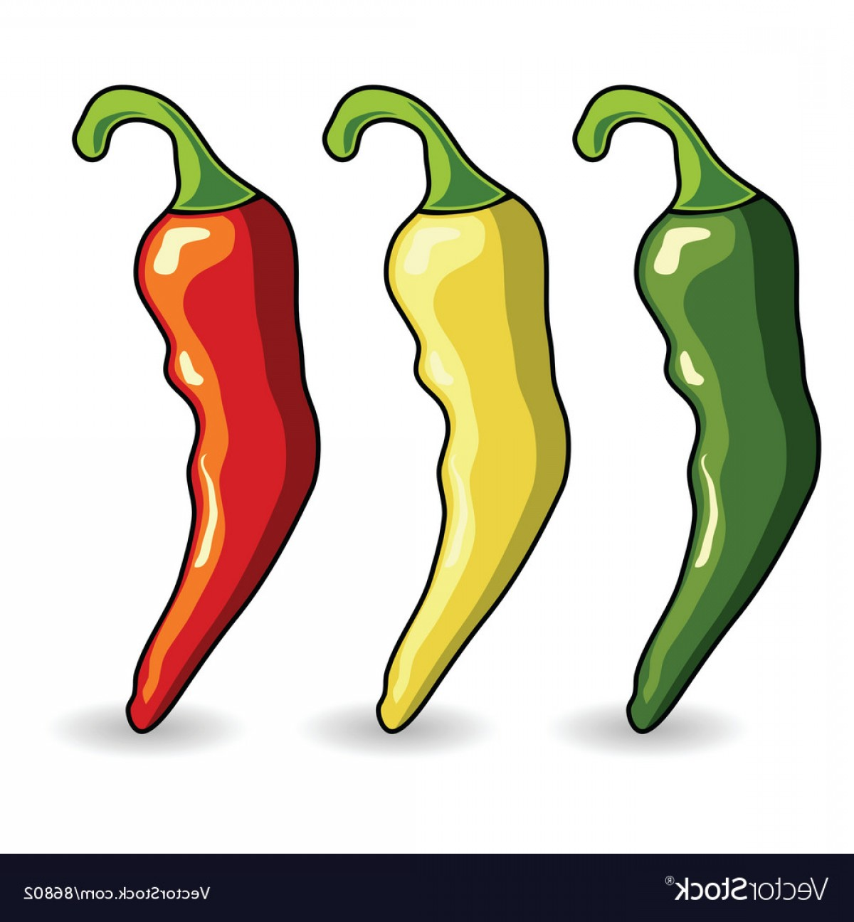 Vector Mexican Chili: Mexican Hot Chili Peppers Vector