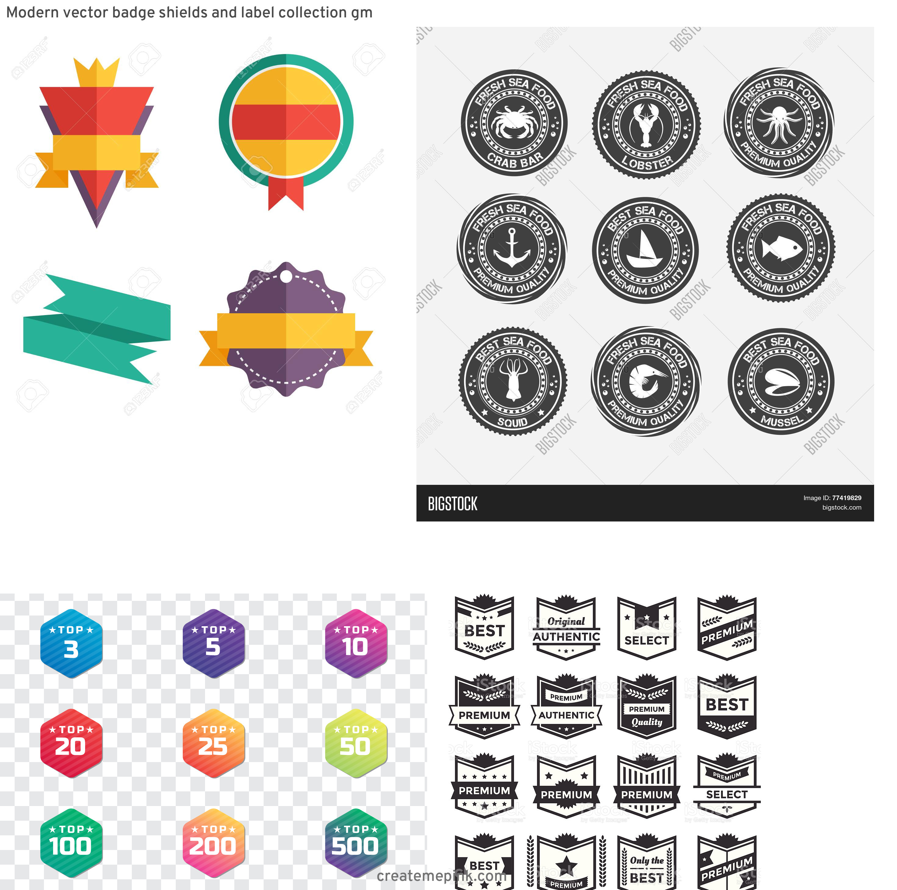 Modern Vector Badges: Modern Vector Badge Shields And Label Collection Gm