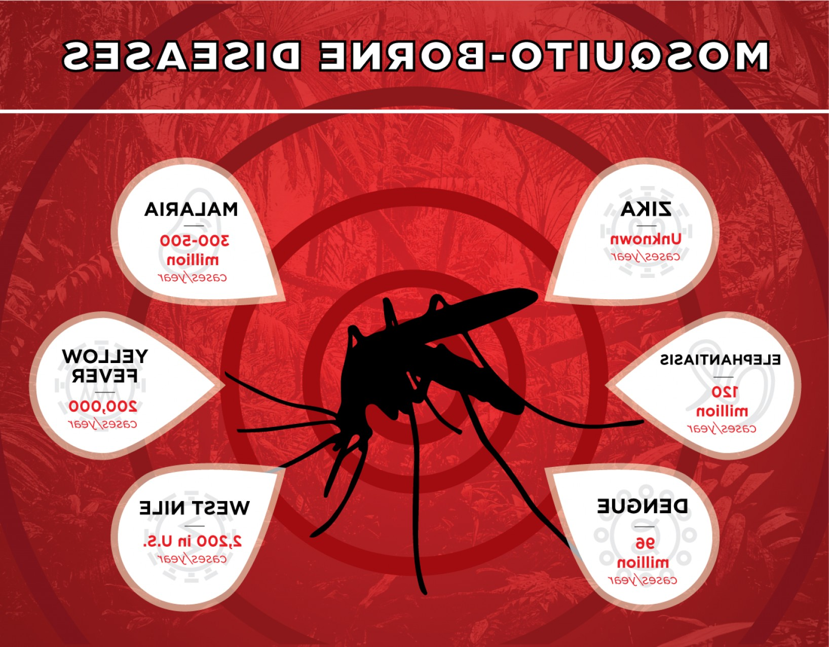 Vectors Diseases Caused By: Mosquito Borne Diseases Symptoms Prevention And Treatment