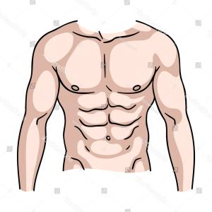 Vector Muscle Man Cartoon Cut: Muscular Torso Icon Cartoon Style Isolated