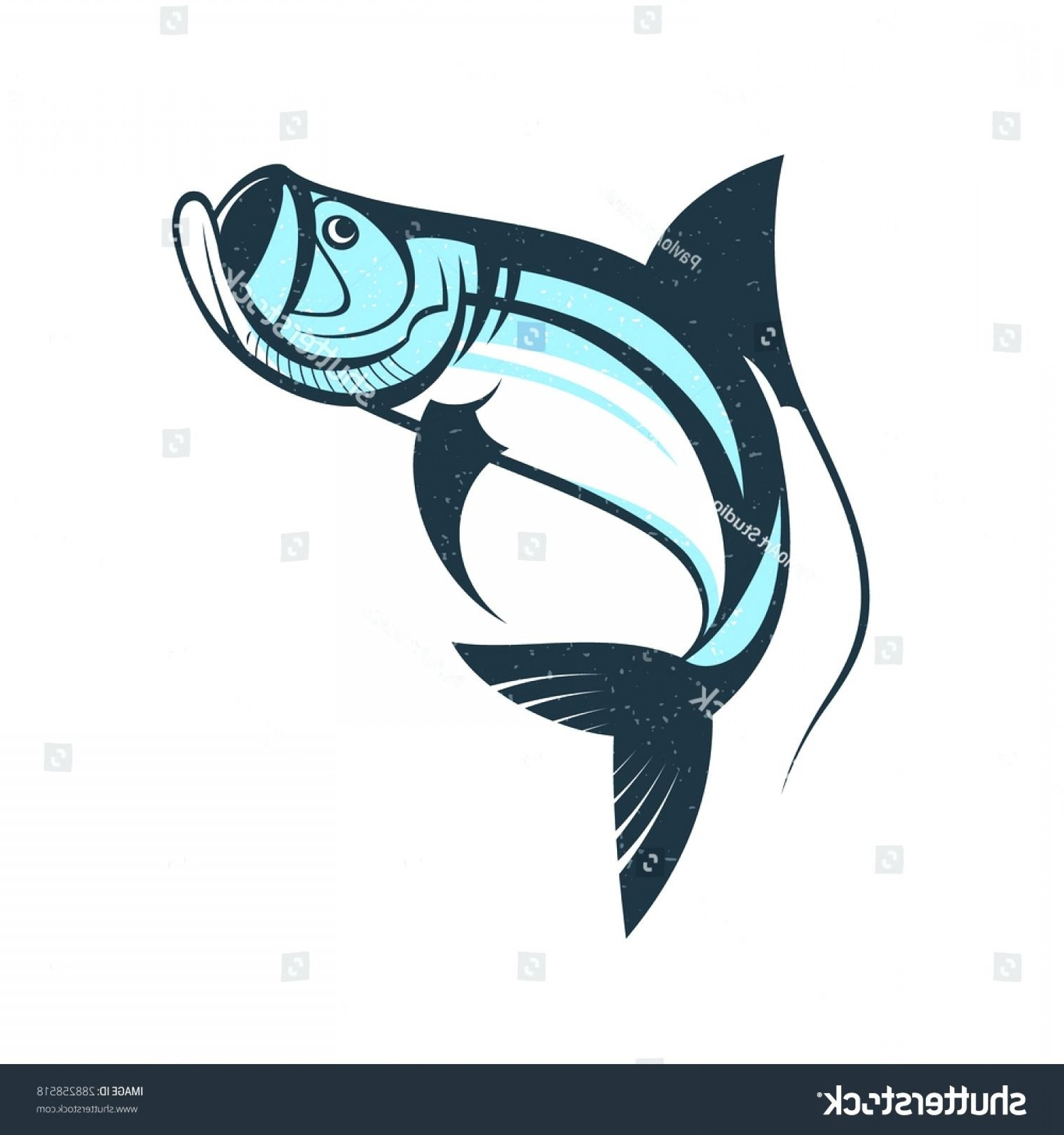 Shark Logo Vector: Nail Polish Template Make Up Artist Business Card Vector Layout With Hand Drawn Illustrations Of Bottle
