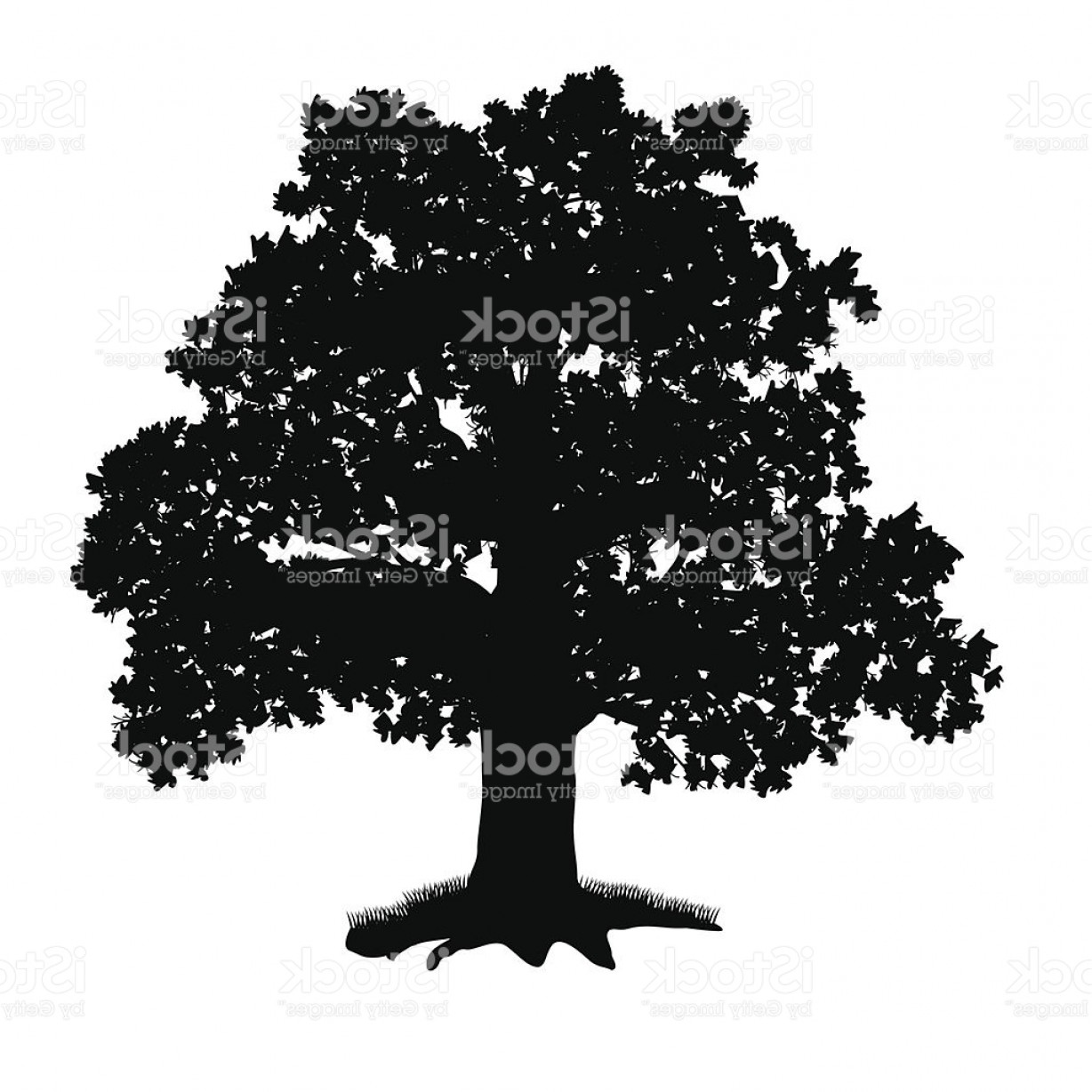 Oak Tree Silhouette Vector Graphics: Oak Tree Silhouette With Leaves Gm