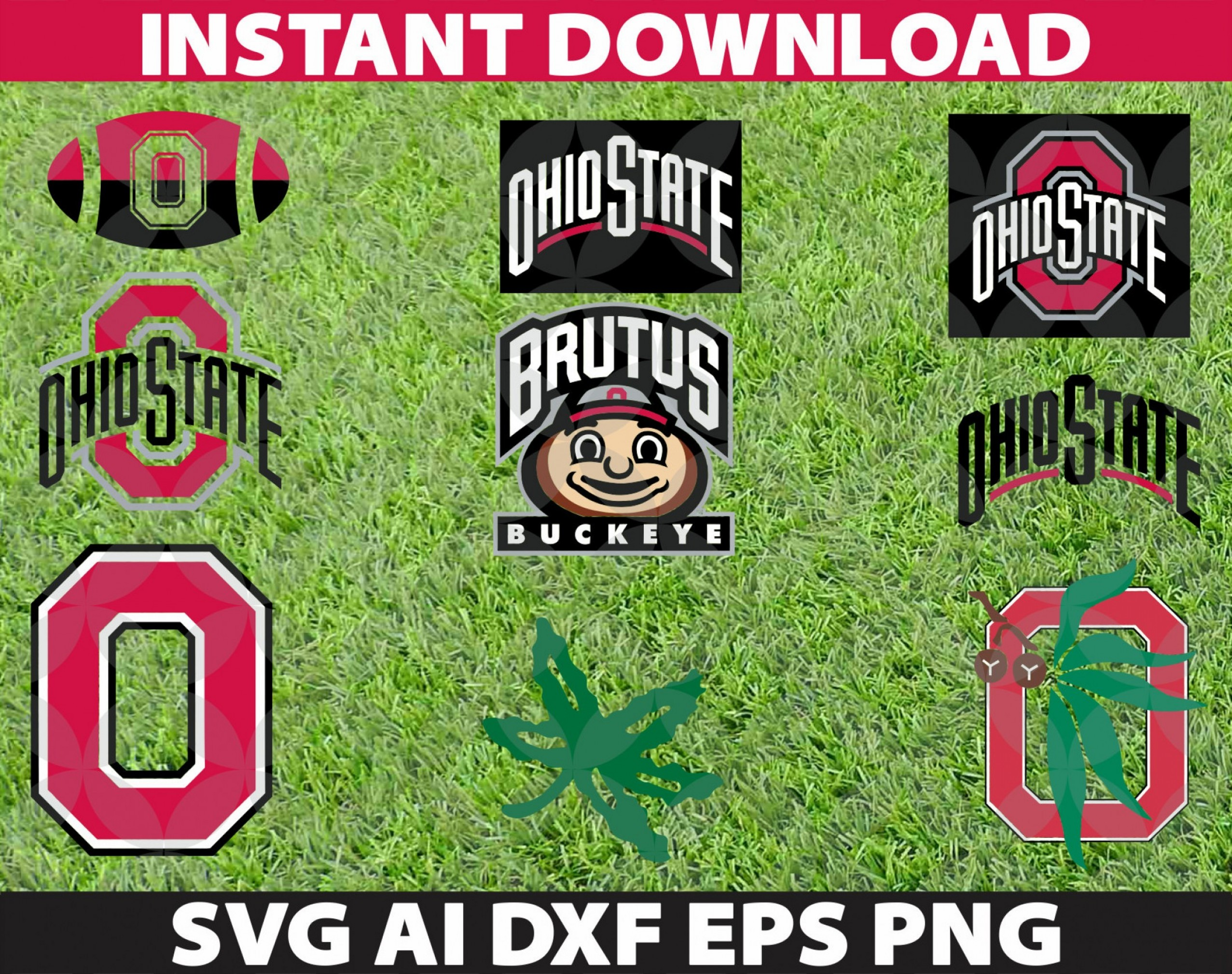 Buckeye Ohio State Outline Vector: Ohio State Buckeyes Svg Eps Ai Dxf Png
