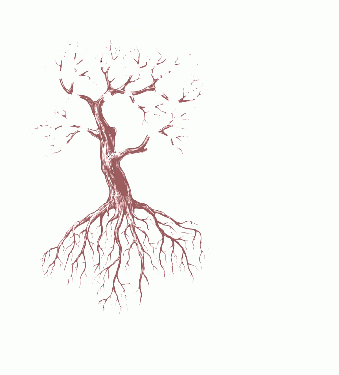 Vector Tree With Roots Drawing: Ohttridrawing Tree Root Draw A Flower Tree