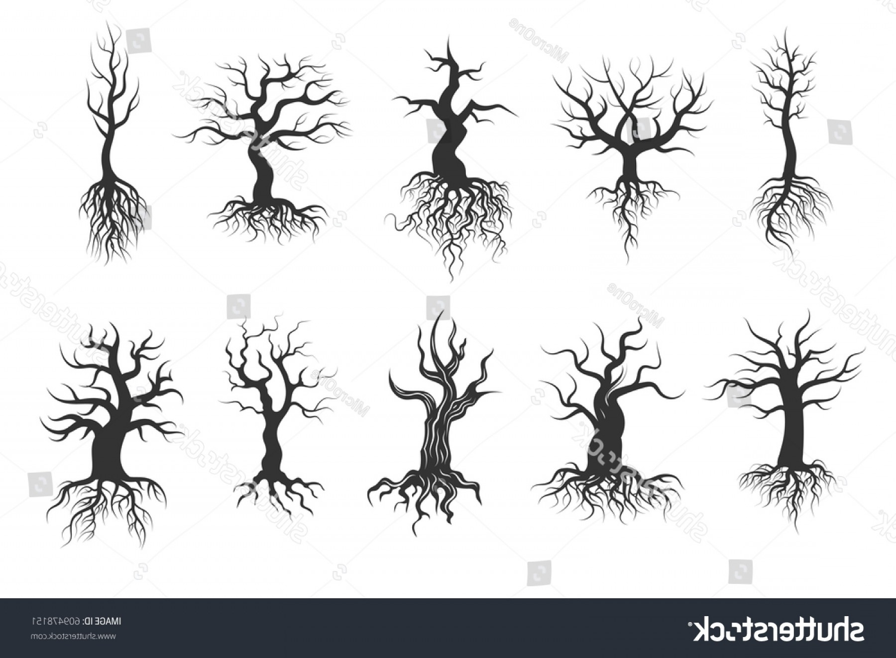 Tree Trunk Silhouette Vector: Old Tree Vector Silhouettes Roots Set