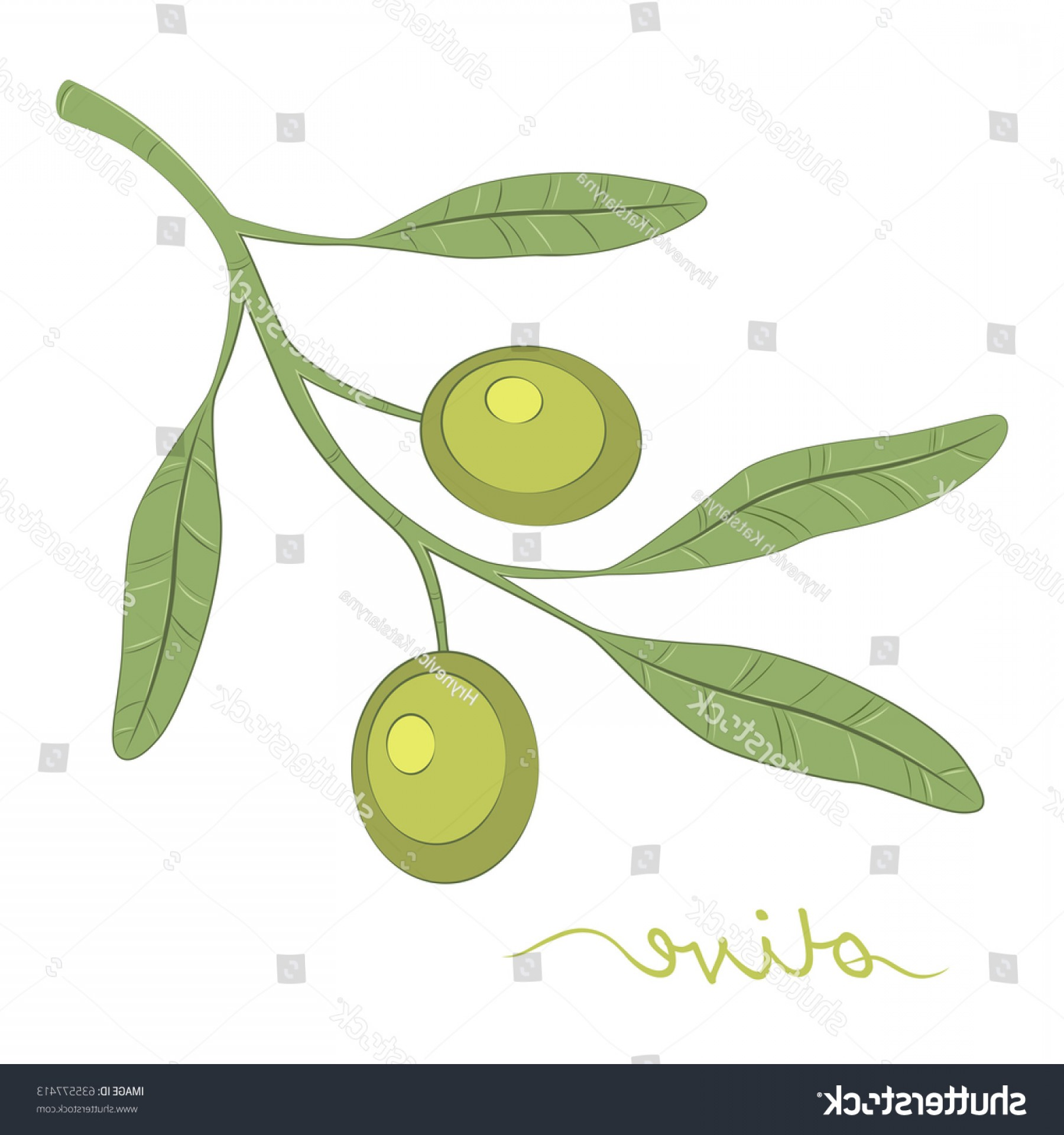 Olive Vector: Olive Tree Oil Green Vector Illustration