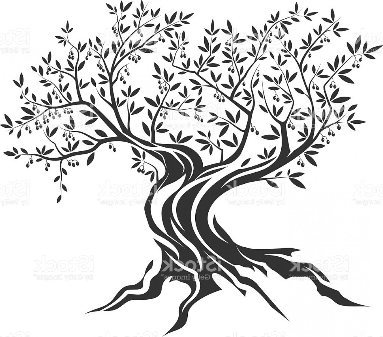 Tree Silhouette Vector Clip Art: Olive Tree Silhouette Icon Isolated Gm