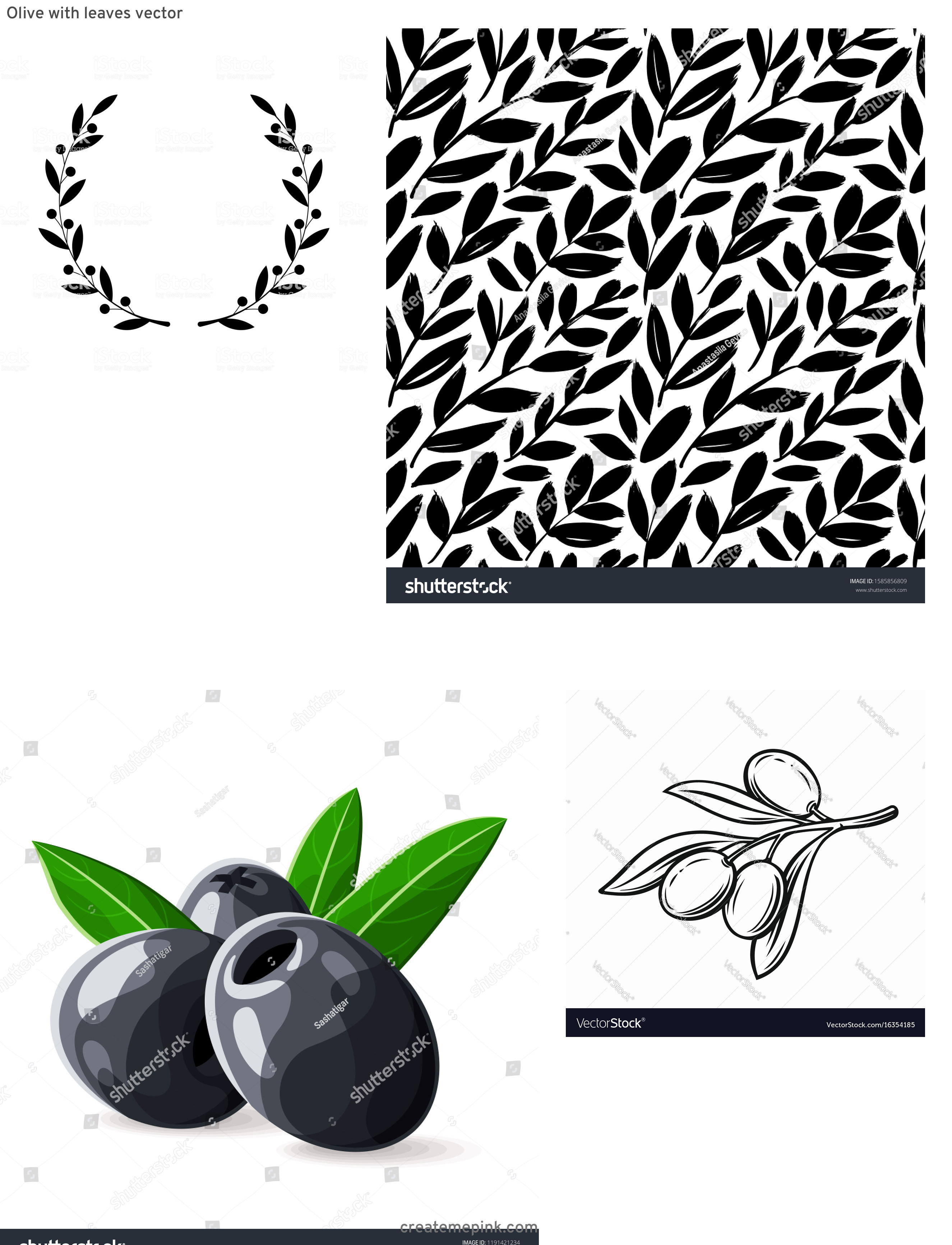 Olive Black And White Vector Leaves: Olive With Leaves Vector