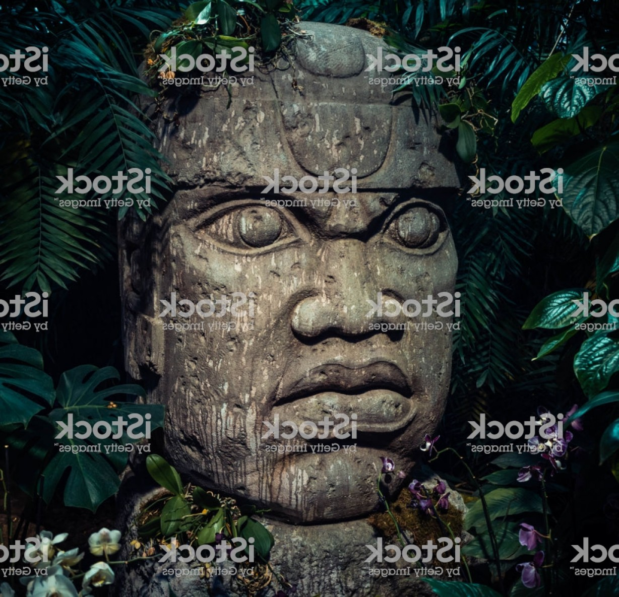Ancient Jungle Statue Vector Images: Olmec Sculpture Carved From Stone Big Stone Head Statue In A Jungle Gm