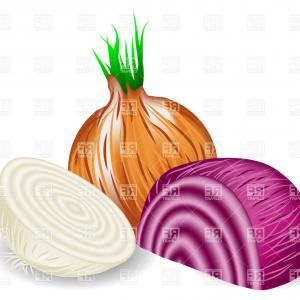 Onion Vector: Onions In Three Colors On White Background Vector Clipart